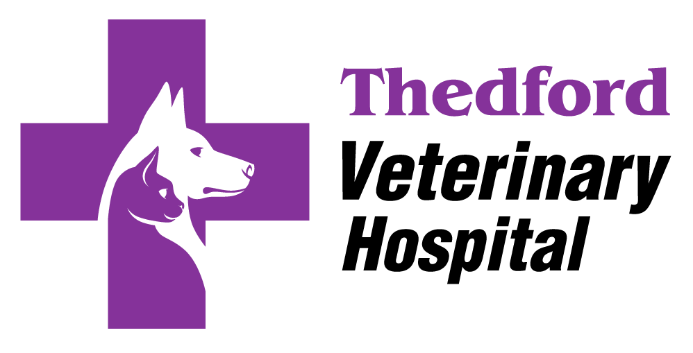 Thedford Veterinary Hospital